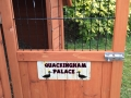 quackinghampalace