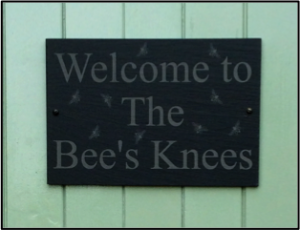 Bees_knees_door_overiew