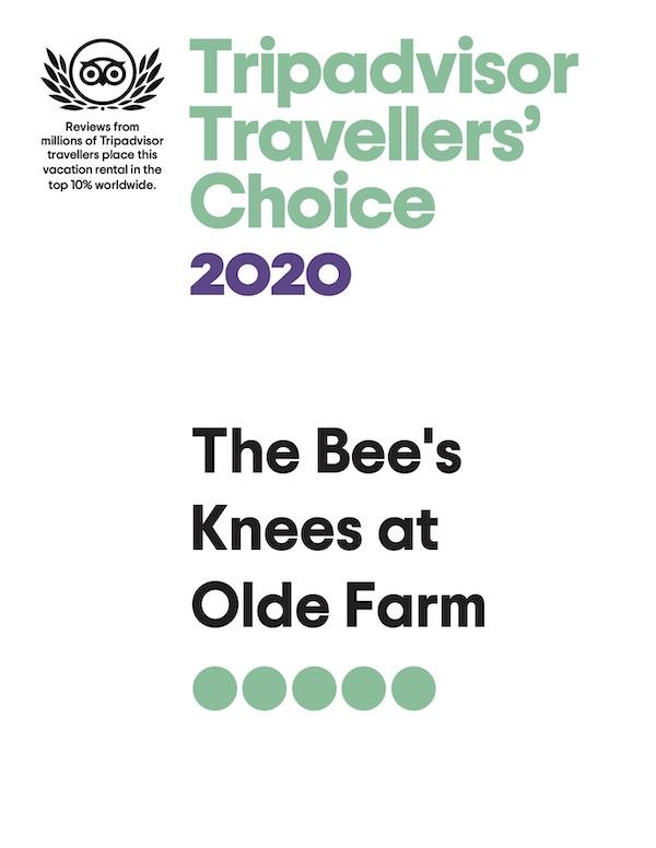 Bees-Award