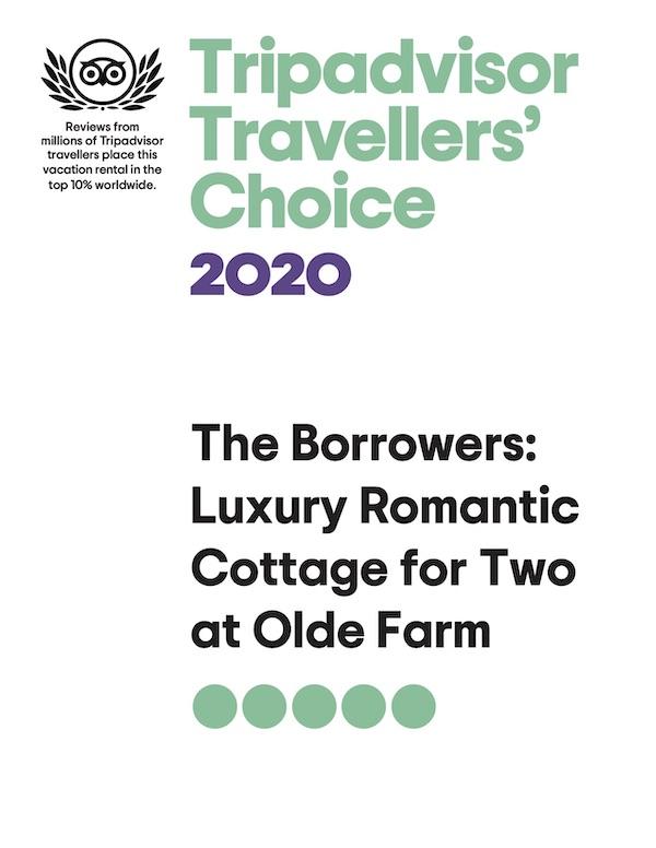 Borrowers-Award